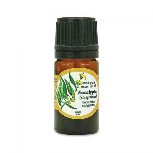 100% pure Eucalyptus (straigeriana) essential oil