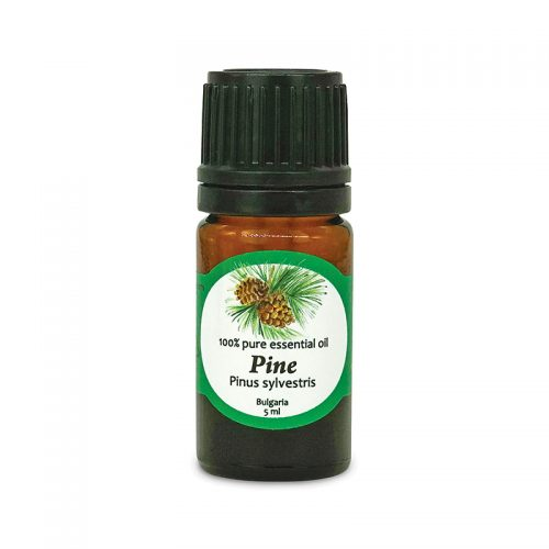100% pure Pine essential oil